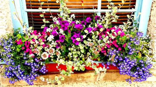 Planting-window-box